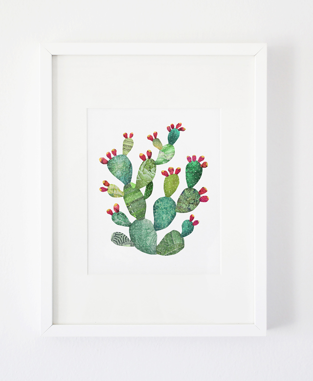 satchelandsage-pricklypear-02