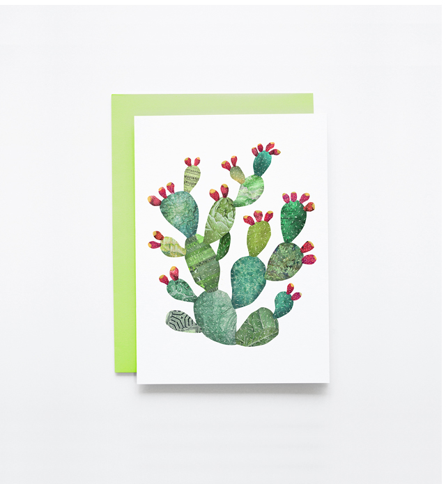 satchelandsage-pricklypear-03