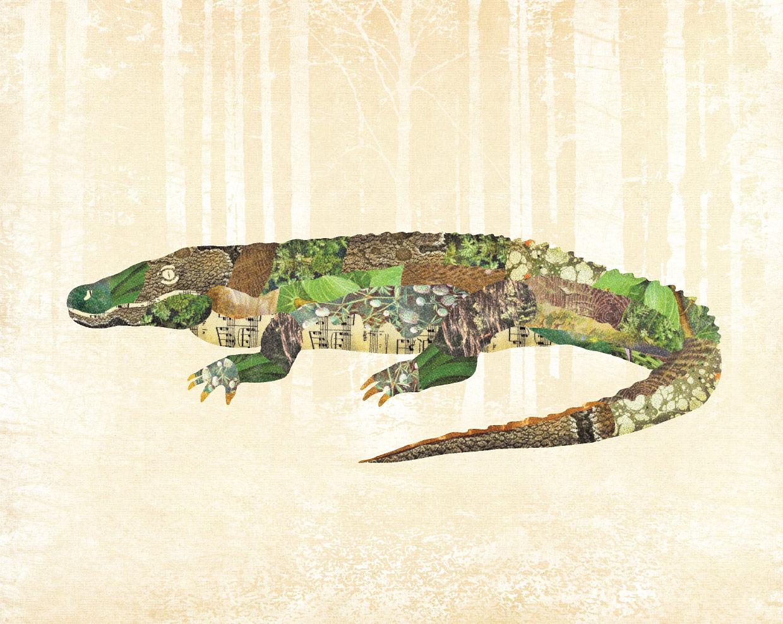 lamsonblog-gator-01
